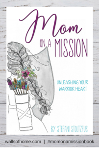 mom-on-a-mission-book